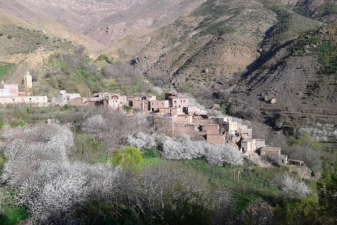 Atlas Mountains Day Trip From Marrakech 3 Valleys & Berber Villages & Camel Ride photo 15