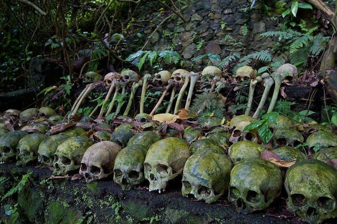 Private Journey to Trunyan - Bali Ancient Cemetery with the Taru Menyan Tree photo 4