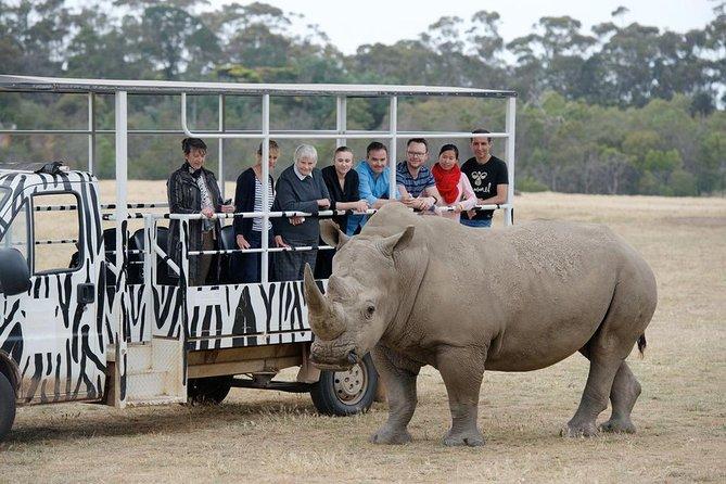 Off-Road Safari at Werribee Open Range Zoo