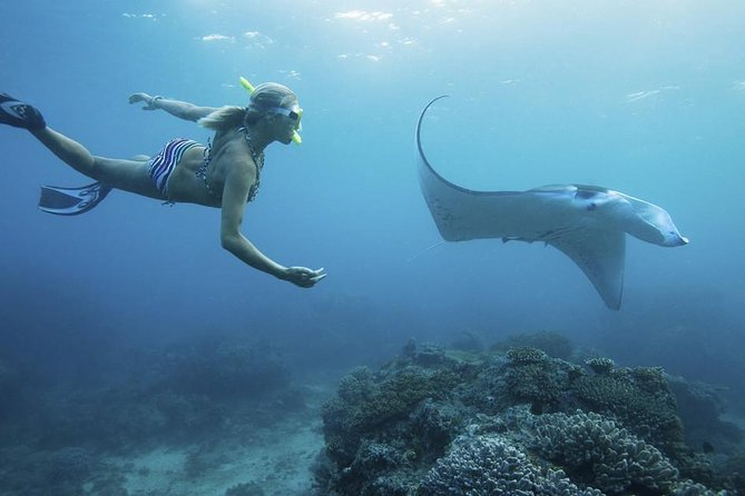 The Best 4-Point Snorkeling in Penida with Manta Rays