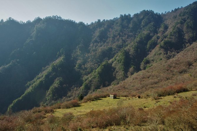 1 day hiking into wilderness around Chengdu