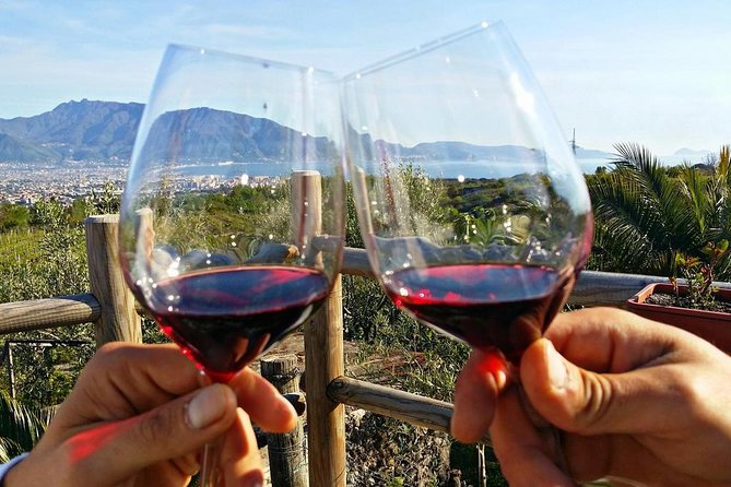 Wine Tasting on Mt. Vesuvio from Naples City photo 3