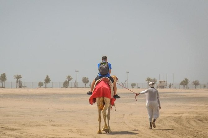South Coast Tour With Camel Ride in Qatar