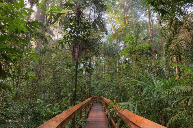 Cinco Ceibas Rainforest Reserve and Adventure Park from San Jose