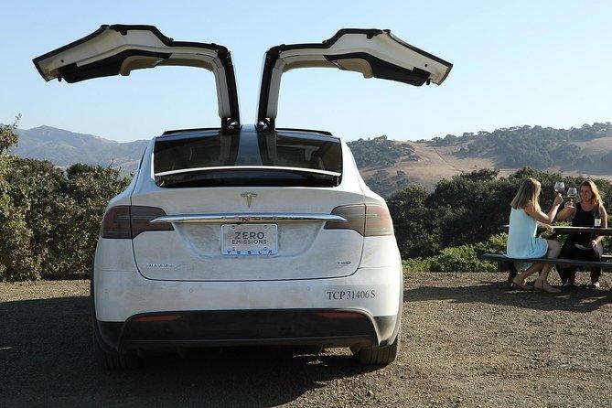 Private Santa Barbara Winery and Estate Tour in Tesla SUV