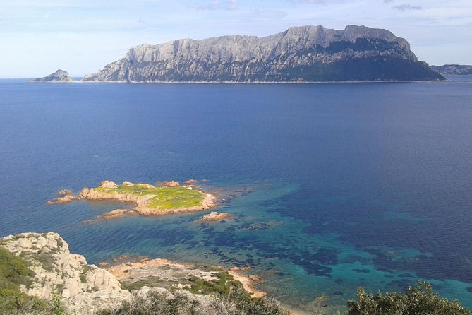Overview of Wine Experience at Capo Ceraso