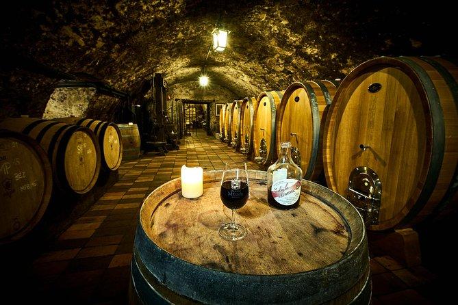 Bohemian Wine Degustation Private Half-Day Trip!