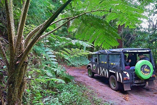 4x4 Jeep Safari - Half Day Adventure