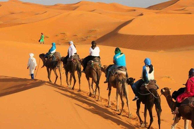 Excursão de 3 dias pelo deserto saindo de Marraquexe para Merzouga Dunes & Camel Trek