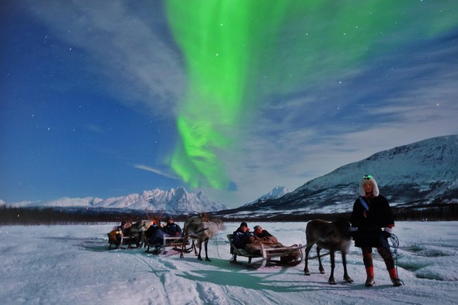 Northern Lights and Reindeer Sledding in Tromso