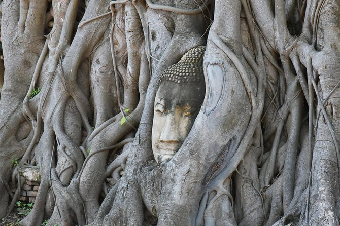 Visit Wat Mahathat Ayutthaya