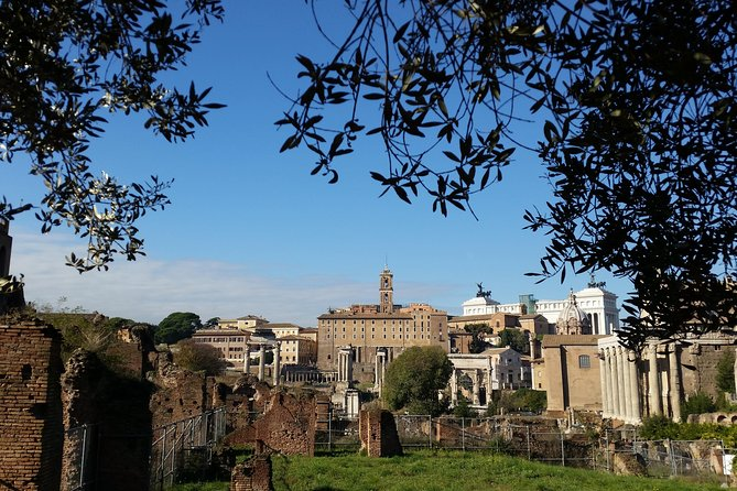 Colosseum and Roman Forum Skip-the-Line Private Tour photo 9