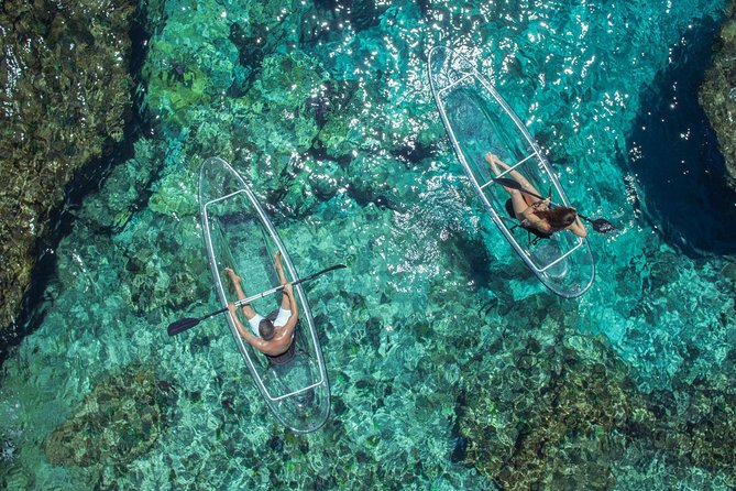 Transparent Kayaking Punta Cana and Sosua Bay photo 8