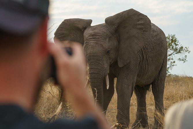 From our safari vehicle (Photo credit: Jaco Becker)