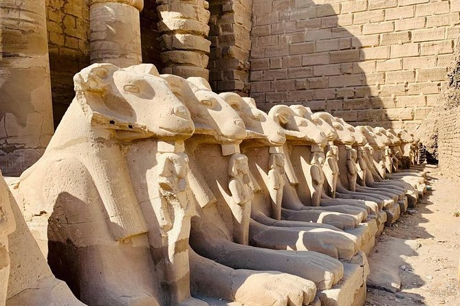 Shore Excursion: Full Day Private Tour To Luxor From Safaga Port