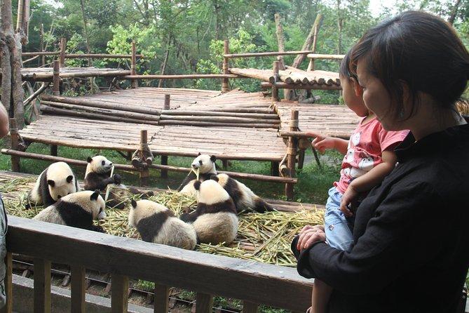 Tour privato di mezza giornata di Chengdu Panda Research Base