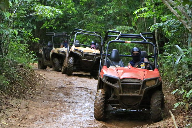 Wet n Dirty ATV Outback Adventure from Falmouth