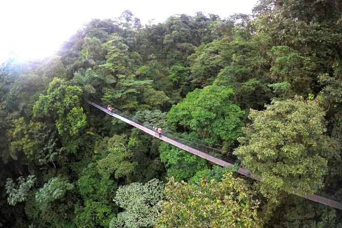 Suspension Bridges, Fortuna waterfall, Typical lunch