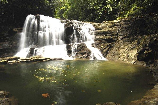 Puma waterfall