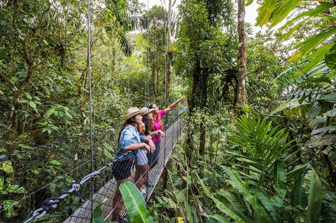 Mistico Park Hanging Bridges Guided Tour