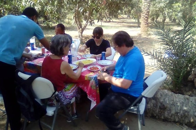 A private day tour for the newest Saqqara tombs & having lunch in a farm photo 8