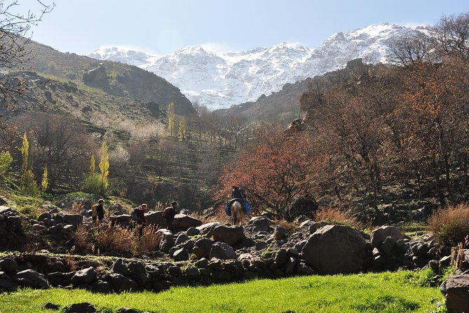 Day Trip and cooking with local family in the High Atlas Mountains photo 6