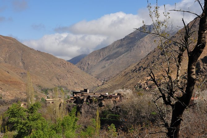 Day Trip and cooking with local family in the High Atlas Mountains photo 18