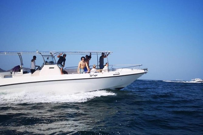 Dolphin watching tours - Muscat