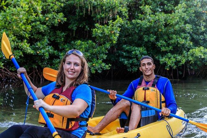 Bio Bay Night Kayaking - 8:00pm Round-trip Transportation from San Juan Area