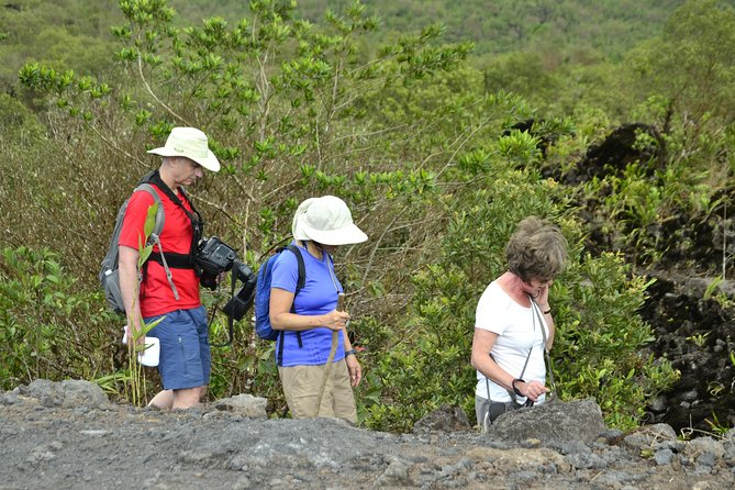Arenal Volcano Lava Trail and Baldi Hot Springs with Dinner photo 9