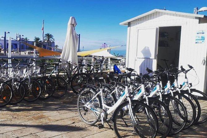 - Marbella, ESPAÑA