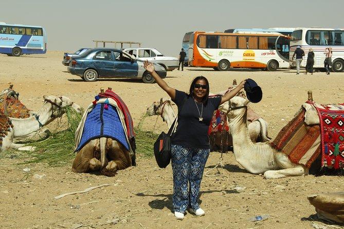 Camel Market Excursion in Cairo