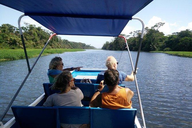 Explorer les canaux de Tortuguero