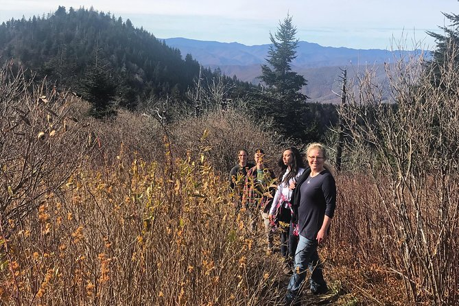 Blue Ridge Mountains Guided Hiking Tour with Local Guide