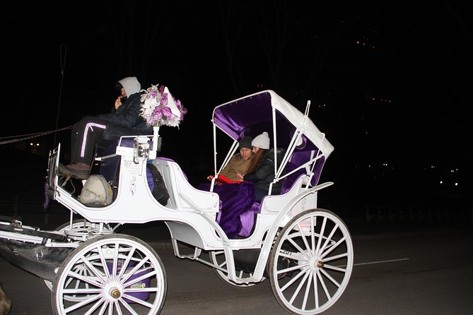 New York City Private Horse Carriage Birthday Tour