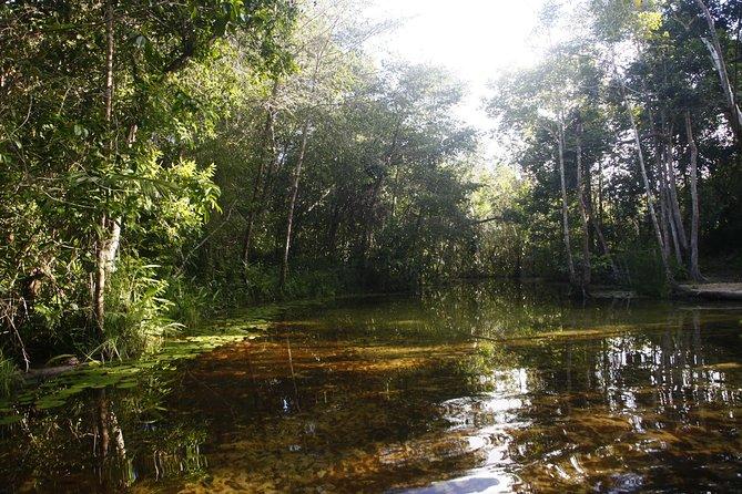 3 days in the reserve of the Indios Potiguara, Baia da Traiçao-Paraiba BR