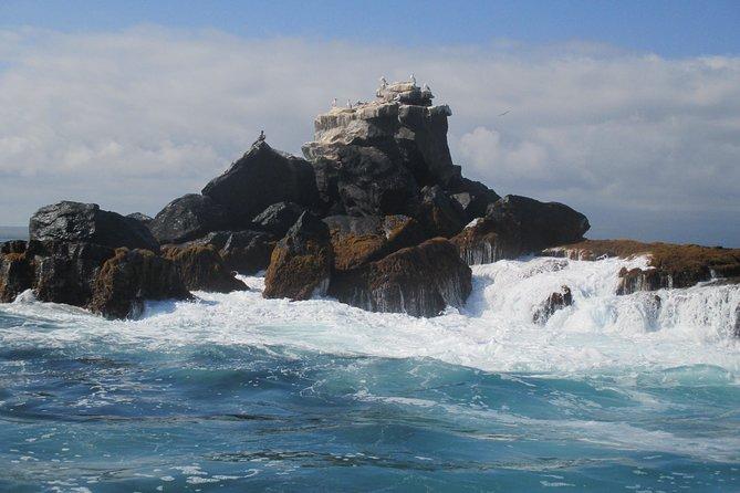 4 Day San Cristobal Galapagos Island Hopping Express