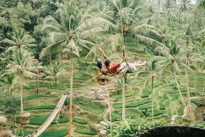Private Guided Tour Ubud Hot Springs and Waterfall