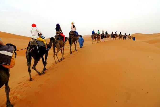 Shared 3 Day Sahara Desert Tour from Marrakech to Merzouga