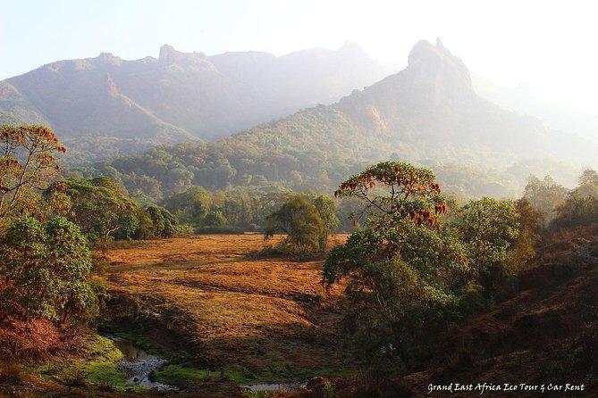 7 Days Trekking in Ethiopia's Bale Mountains