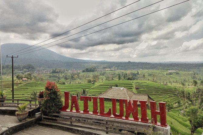 Rice Terrace at Jatiluwih Tour