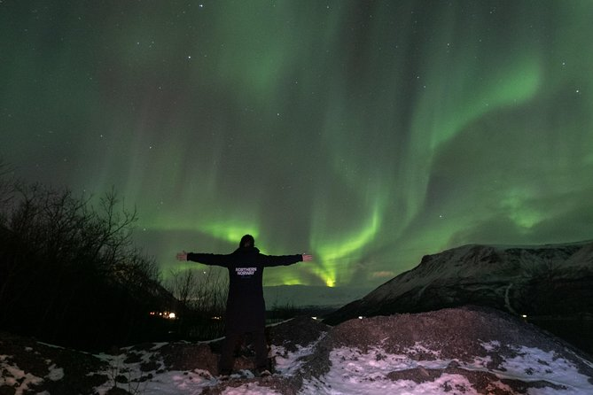 Experience the Northern Lights with Northern Norway Travel