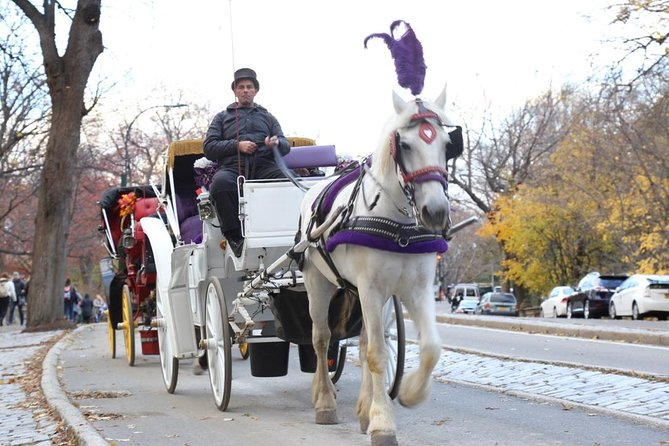 Horse Carriage Tour in New York City's Central Park Small Loop