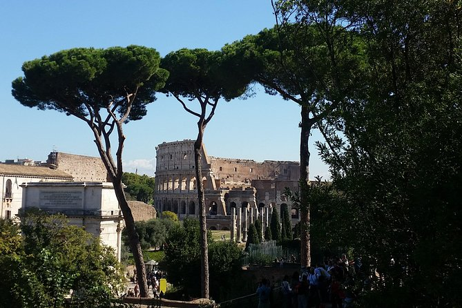 Colosseum and Roman Forum Skip-the-Line Private Tour photo 3
