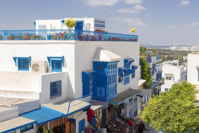 Carthage, Sidi Bou Said, Bardo Museum & Medina Small Group Day Tour from Tunis