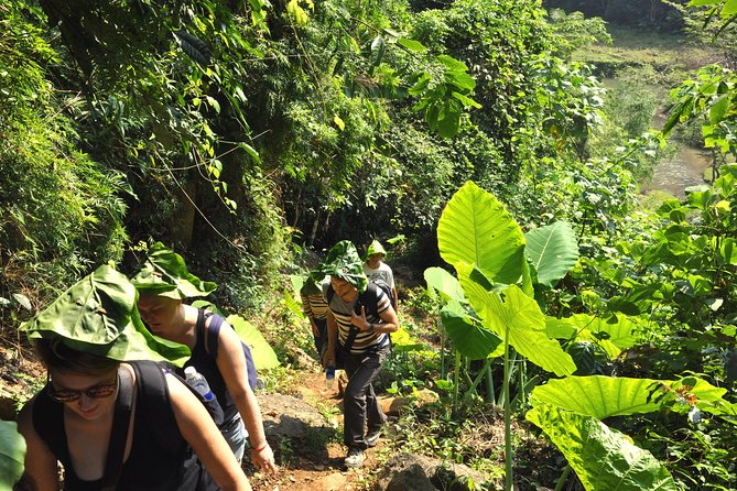4-Day Jungle Trekking in Ba Be National Park photo 1
