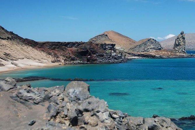 5日間クラシックイサベラ島ツアー