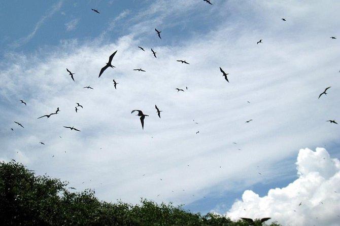 10-Day Trip to the Huaorani Community in the Ecuadorian Amazon
