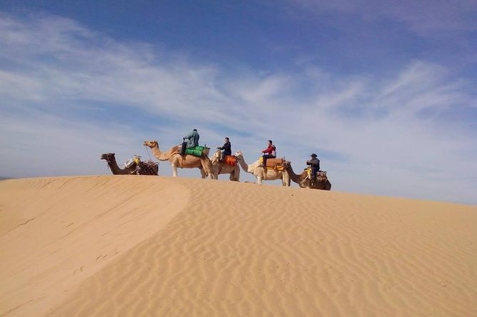 3-hour Dromedary Ride in Essaouira with Diner and Overnight