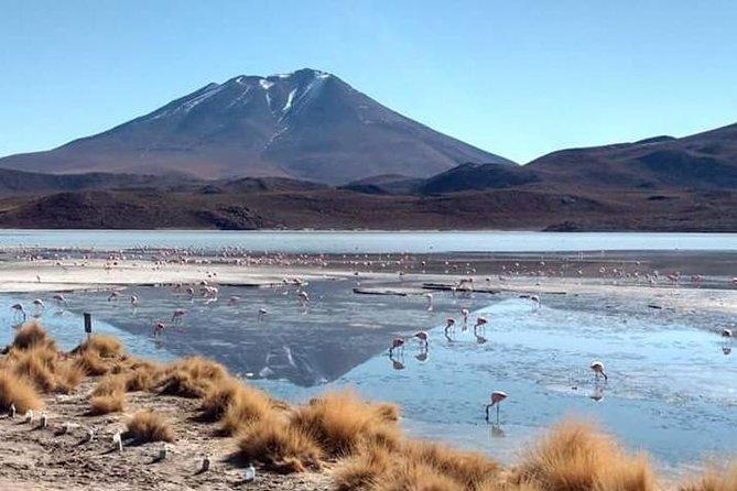 3D 2N Uyuni Salt Flats de avião de La Paz para Atacama, Chile